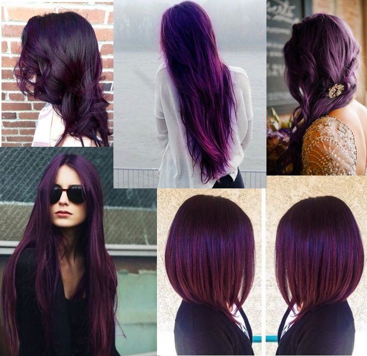 Couleur cheveux violet rouge dark brown hairs - Couleur violet prune ...